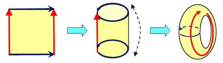 """Figure 4. Gluing a torus together."""