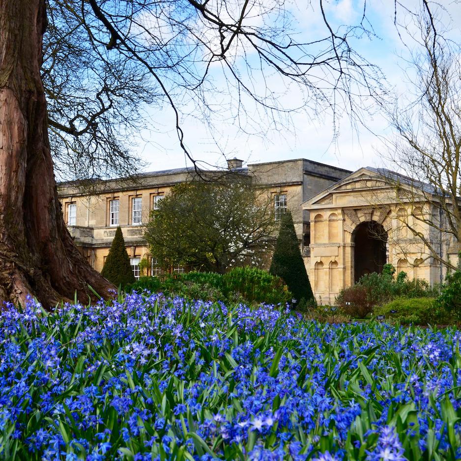 T3D_Exhibition at Oxford Botanic Garden