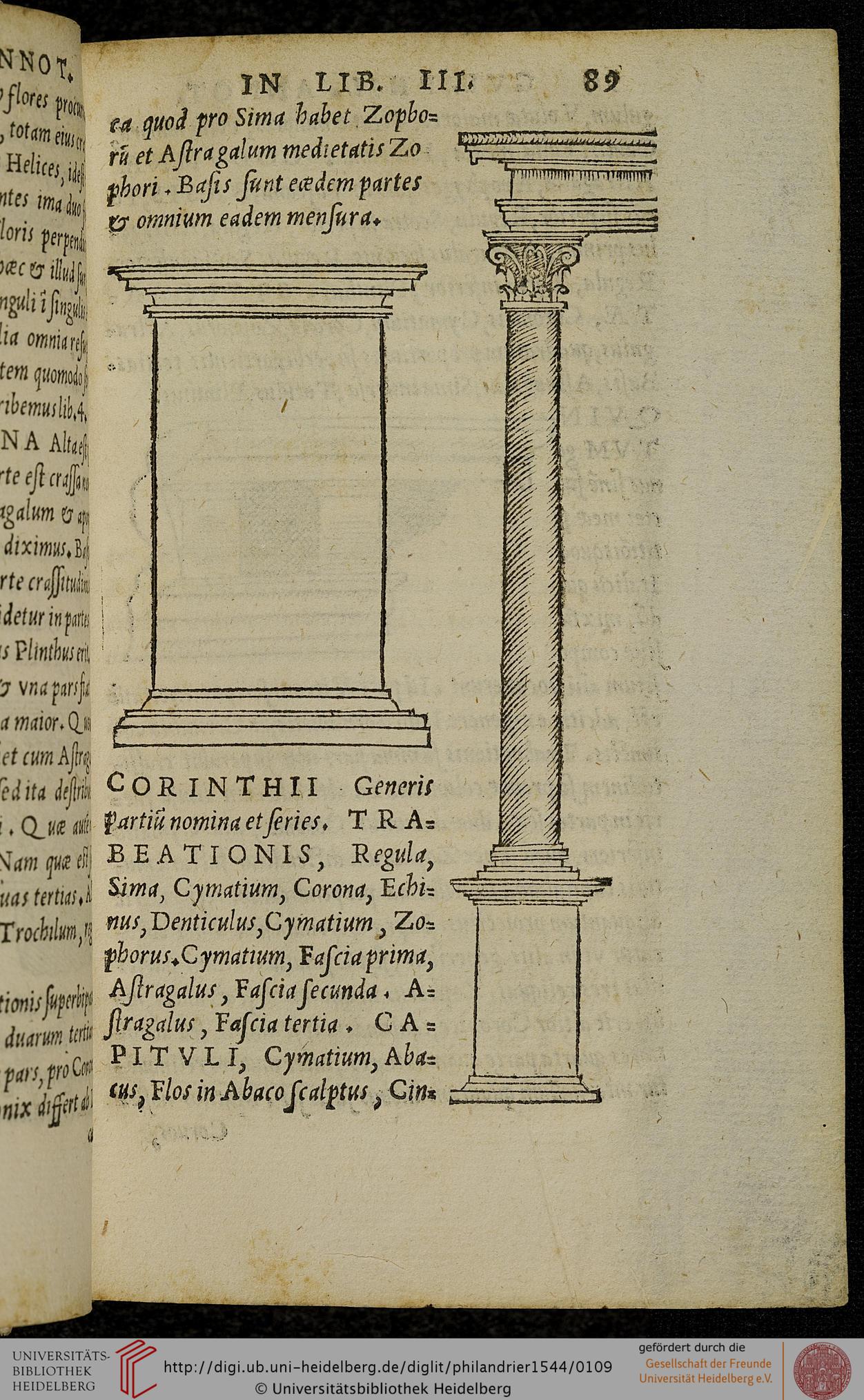 """Fig. 2. G. Philandrier, Digression on the five orders (In decem libros M. Vitruvii Pollionis de architectura annotationes…, Rome, 1544, p. 89)"""